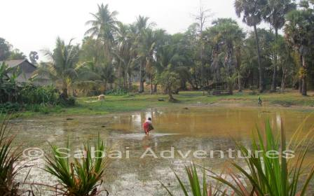 Cambodia countryside with Sabai Adventures